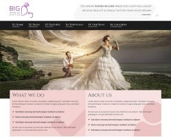 Big Day: WordPress Theme for Wedding Planners