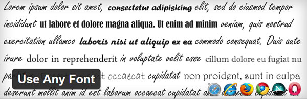 Use Any Font Plugin