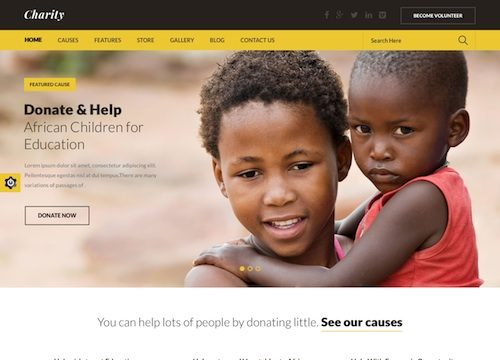 The Best Non Profit WordPress Themes