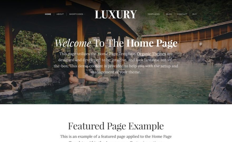 Luxury WordPress Theme