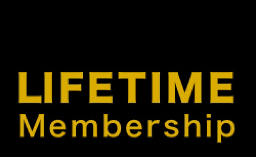 Premium WordPress Theme Shops with Lifetime Membership Packages