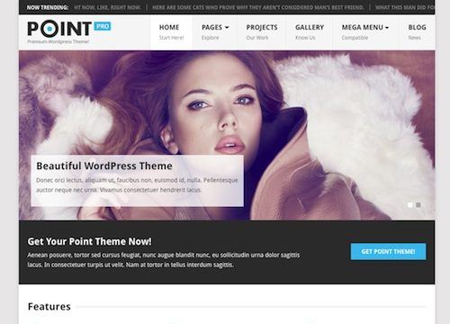 Point Pro WordPress Theme