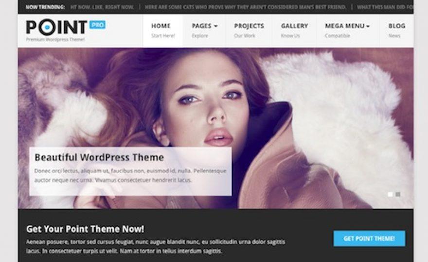 Point Pro WordPress Theme