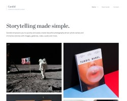 Candid WordPress Theme