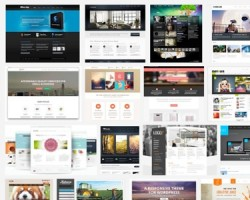 10 Things to Consider When Choosing a Premium WordPress Theme