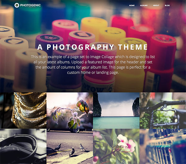 Photography Website Photogenic Obox Theme