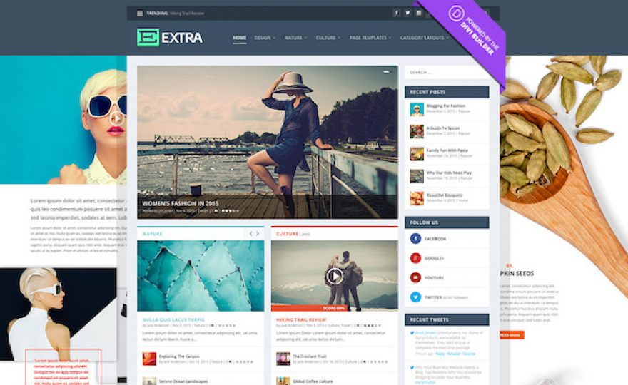 Extra: A Drag & Drop Magazine WordPress Theme Powered by Divi Builder
