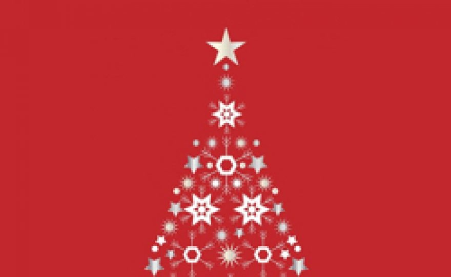 Christmas & New Year WordPress Deals