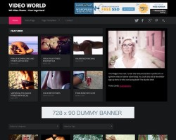 Video World WordPress Theme