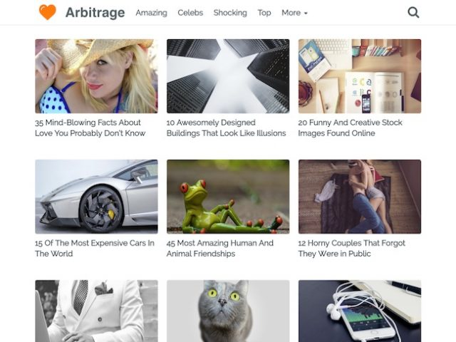 Arbitrage WordPress Theme