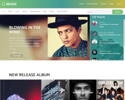 Music: A Multipurpose Music WordPress Theme