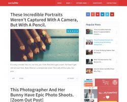 Social Me: WordPress Blog Theme