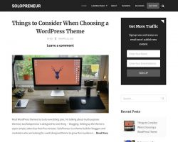 Solopreneur: Blog WordPress Theme for Pro Bloggers and Marketers