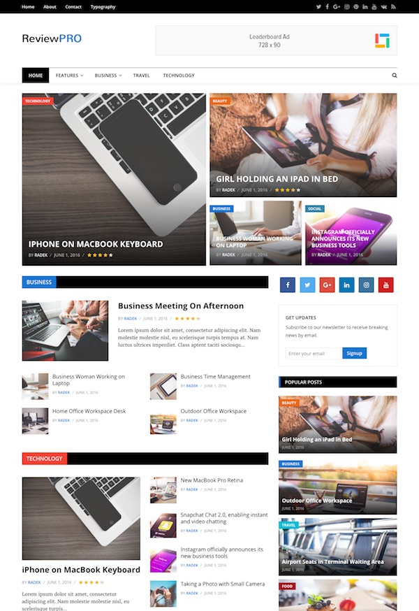 review pro wordpress theme