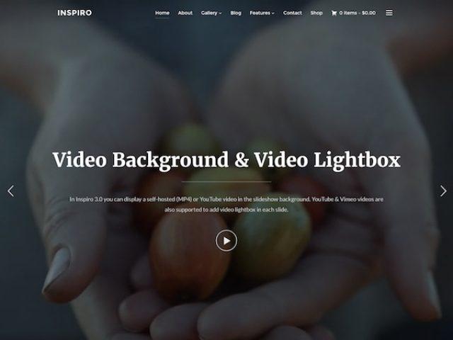 Inspiro Photo & Video WordPress Theme
