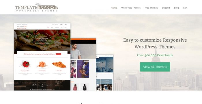 Template Express WordPress Themes Review