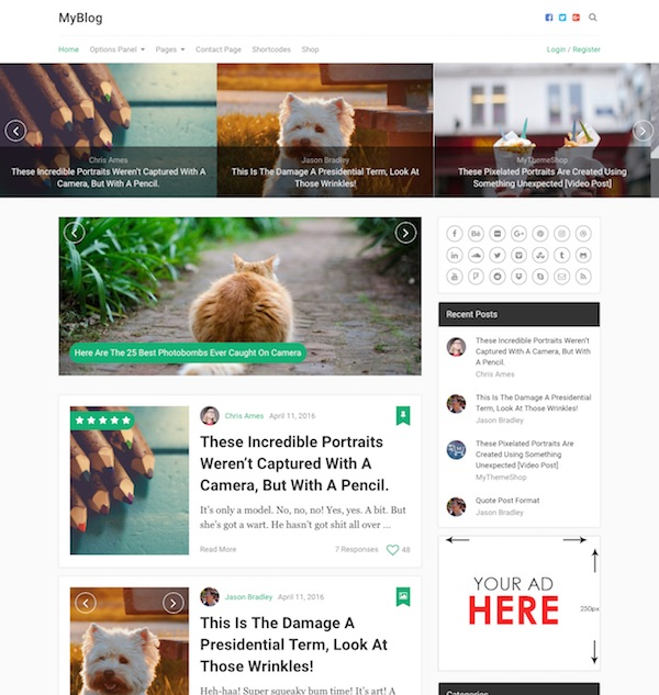 40+ Best Premium Blog WordPress Themes (2018)