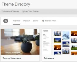 Free or Premium WordPress Theme – Which is Best?