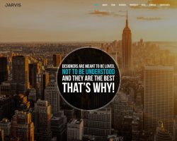 10 Top One-Page WordPress Themes
