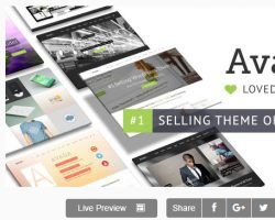 The Ultimate Guide to Choosing a WordPress Theme