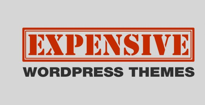 5 Most Expensive WordPress Themes on ThemeForest ($250 – $1000 each and They're Terrible!)