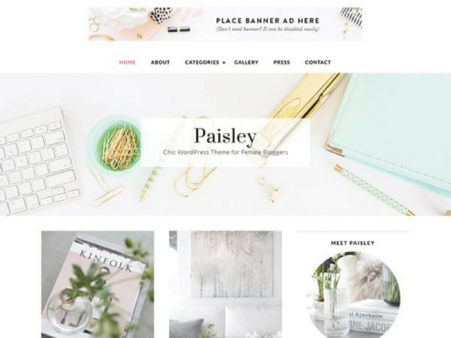 Paisley WordPress Theme